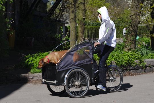 Chiristiania Bike