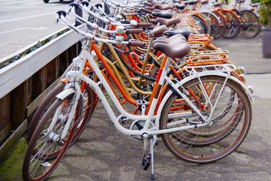 Negozio bici 2