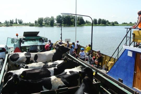 Vacanza a pedali da londra ad amsterdam con verde natura for Vacanza a amsterdam