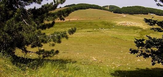 Macchia sacra, Monte Curcio
