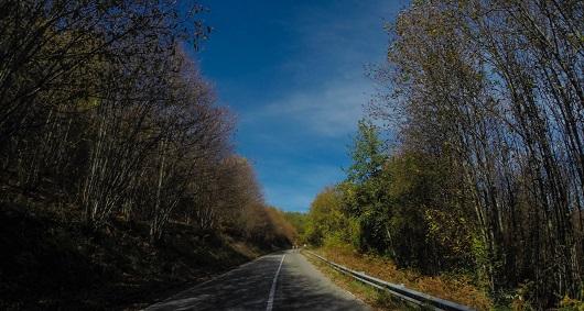 La strada tra Domanico e Potame