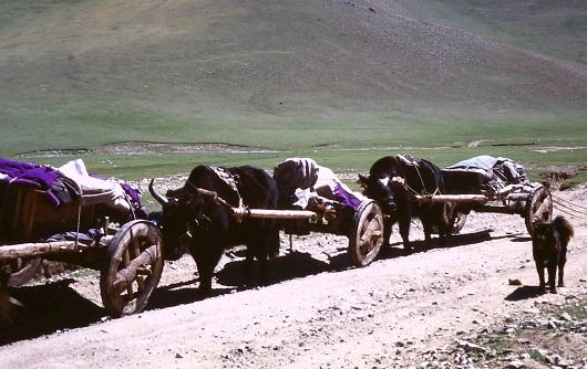 antichi-mezzi-di-trasporto
