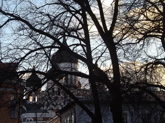 La cattedrale Nevsky