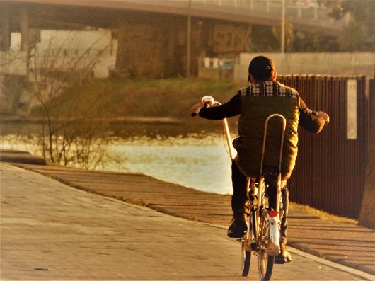siviglia-bici-11