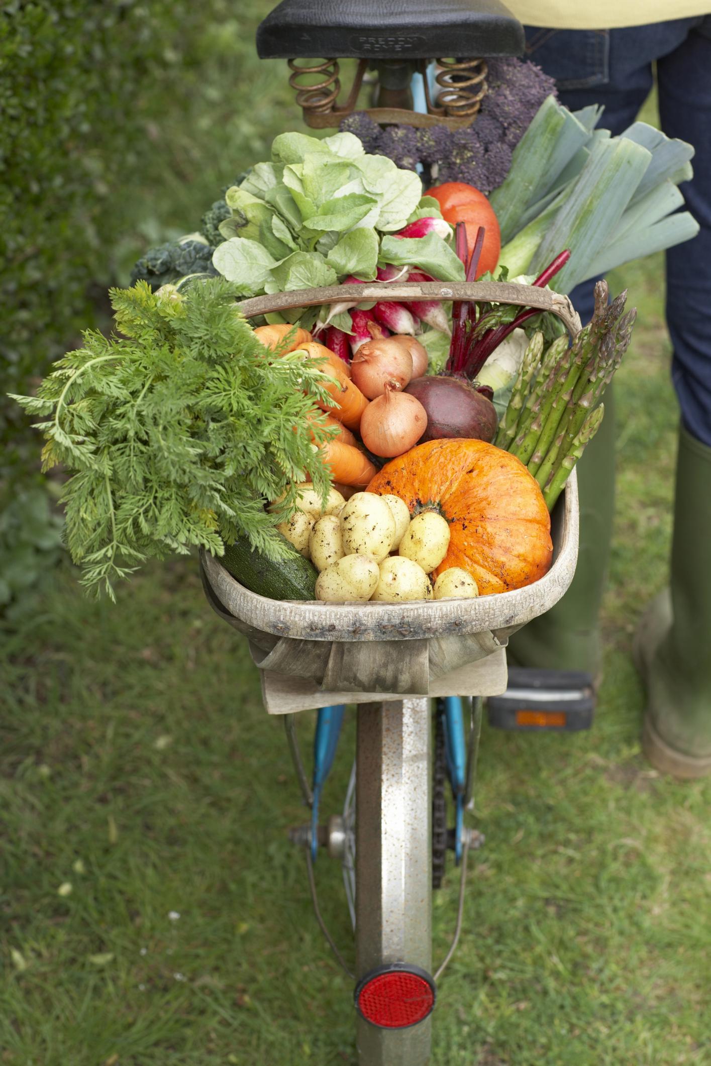 Bicicletta con cesto di vegetali