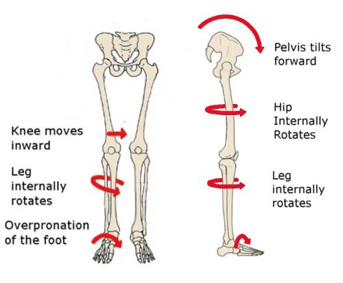 Movimenti articolazione arti inferiori