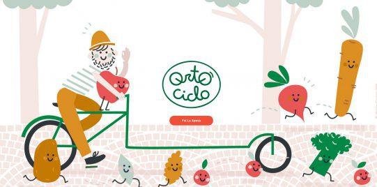 ortociclo