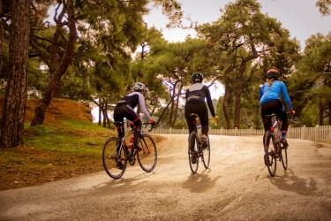 Ciclisti nella foresta