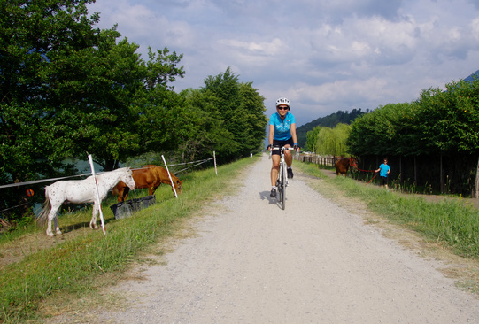 Sterrato sentiero Valtellina