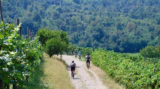 Terre del vescovado pedalando alla scoperta dei sapori for Planimetrie del paese di collina