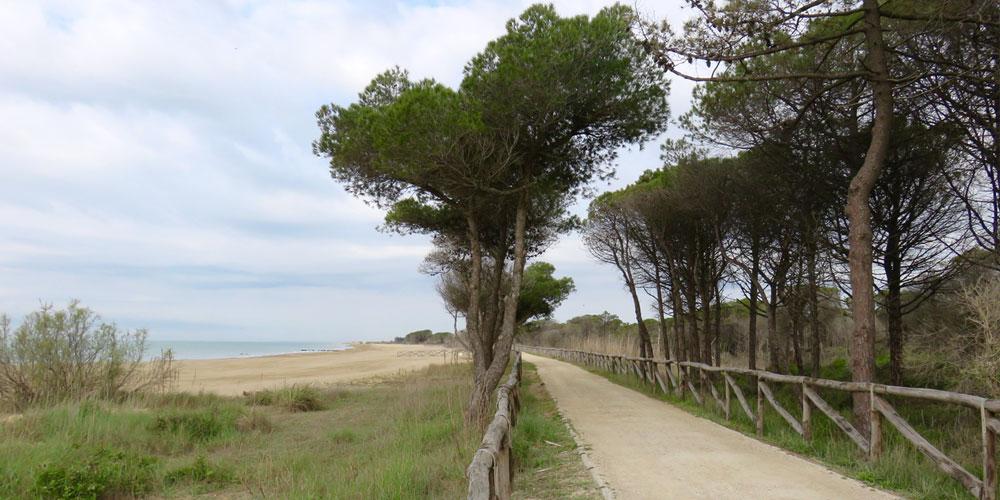 natura nell'alto adriatico