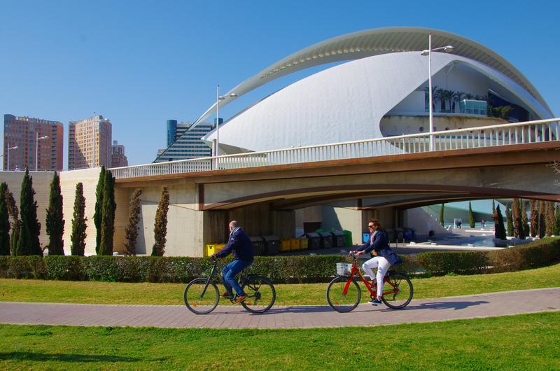 valencia bicicletta albufera