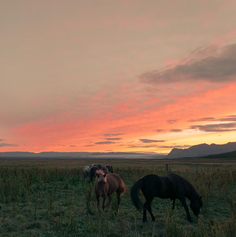 Sito di incontri islandesi gratuito