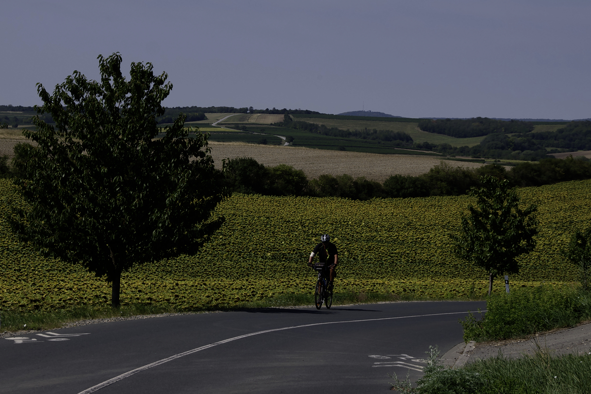 moravian-wine-trails-eurovelo-repubblica-ceca6