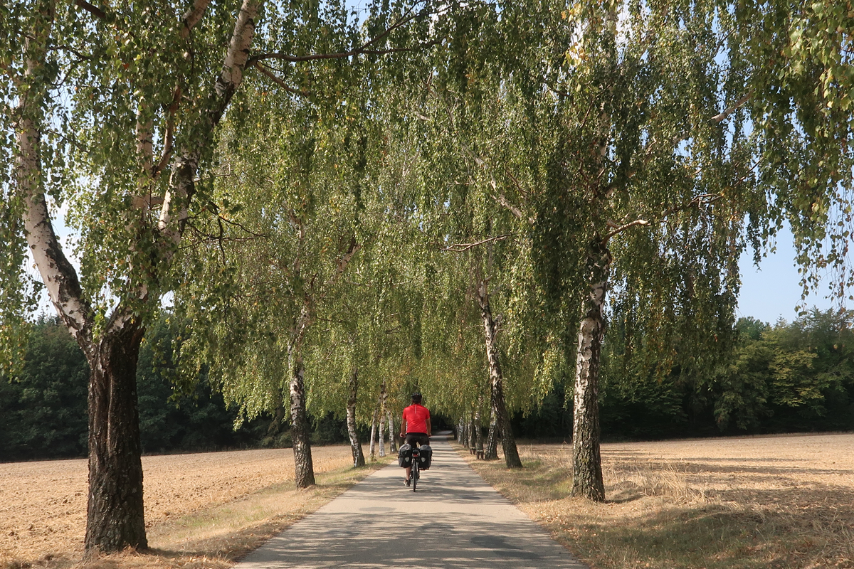 moravia-meridionale-in-bicicletta