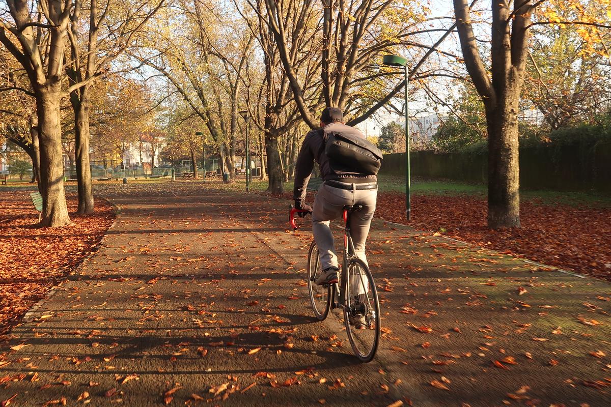 hikari-pedaled-1