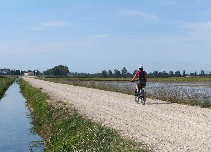 Delta Ebro bici
