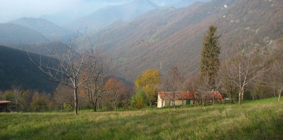 Parco dei Colli - by Visit Bergamo