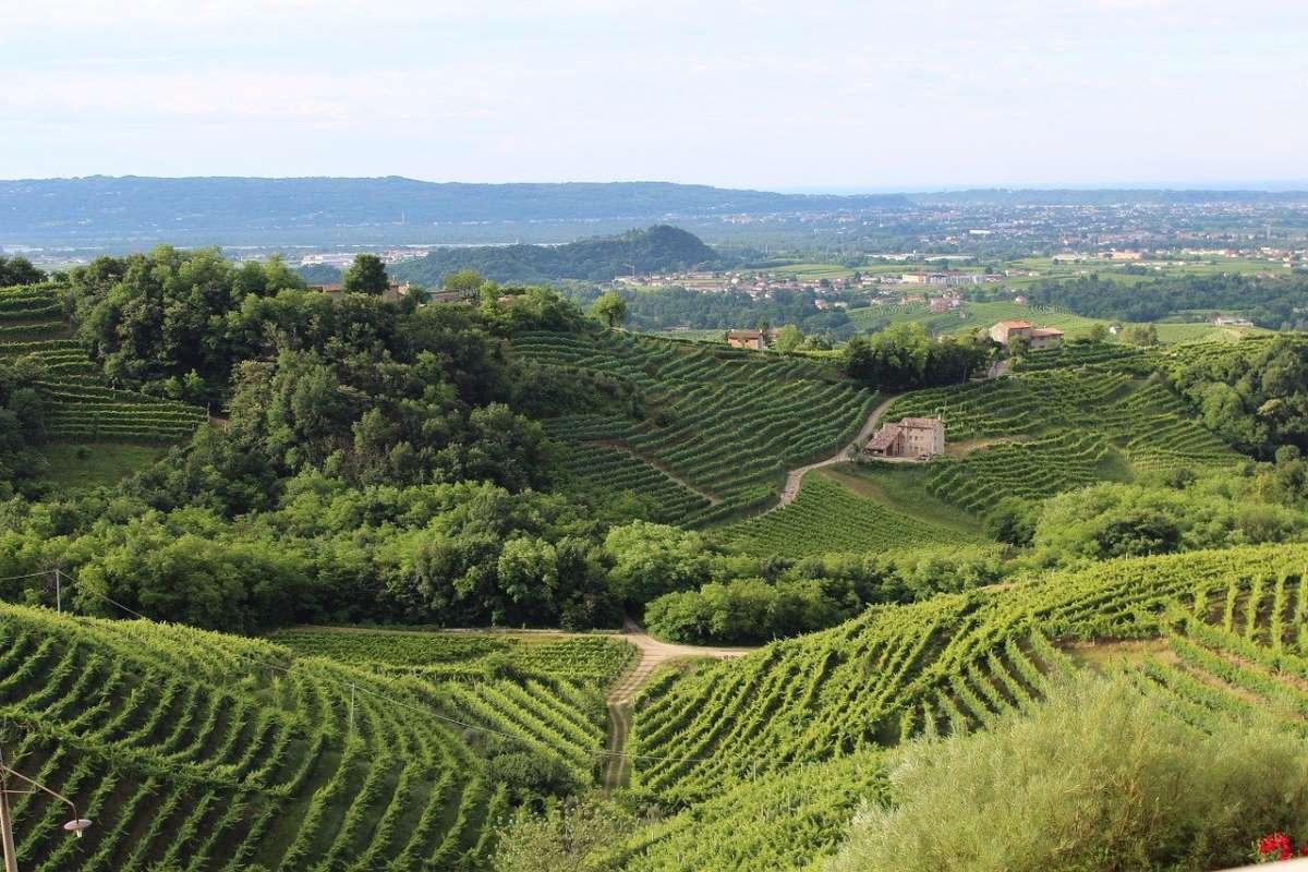 Colline di Treviso, Veneto - Foto di daniFAB da Pixabay