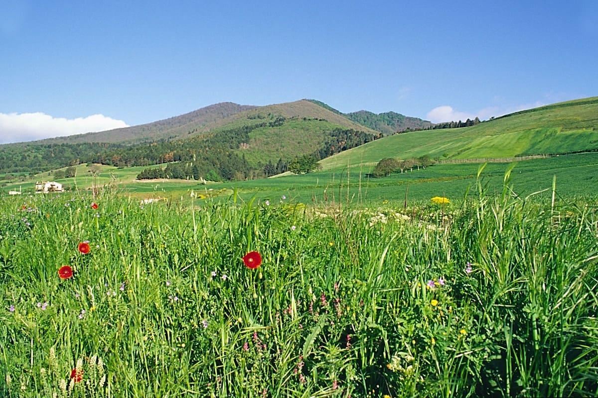 Monte-Vulture_Basilicata-Turistica_Flickr