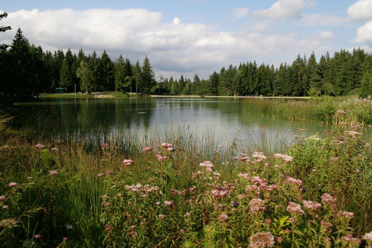 Lago di Bloke, Slovenia (Slovenian Tourist Board)
