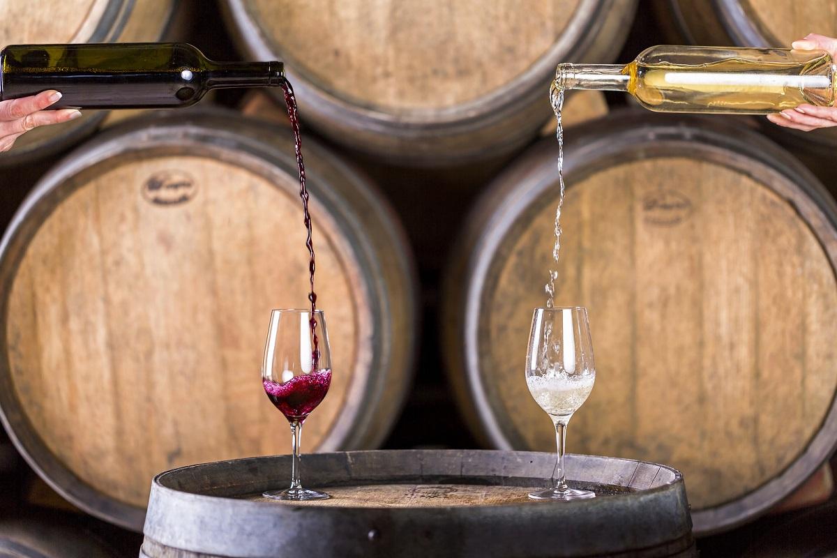Vino del Carso, crediti Slovenian Tourist Board