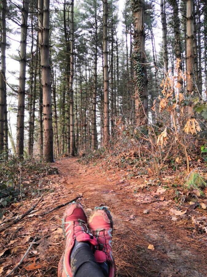 Trail running nei boschi