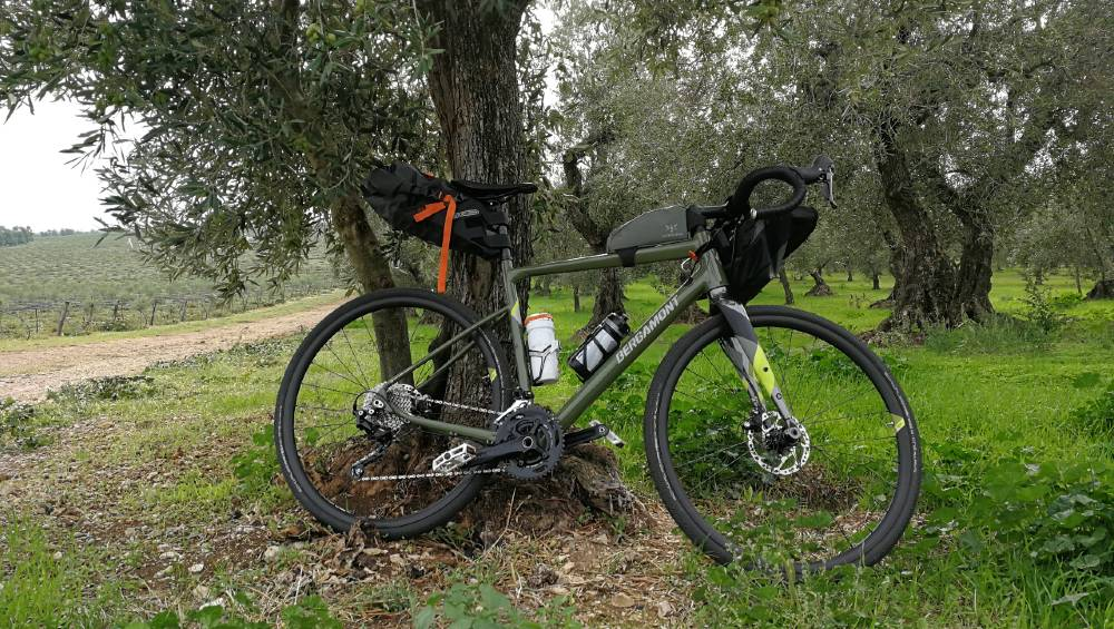 Bergamont Grandurance 6 recensione