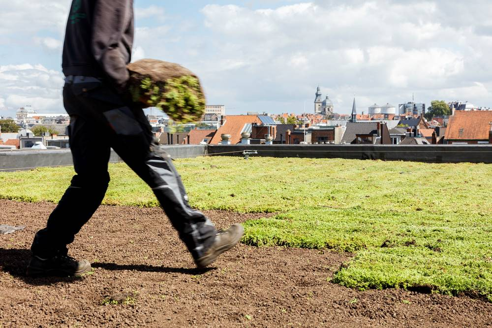 verde urbano città resiliente
