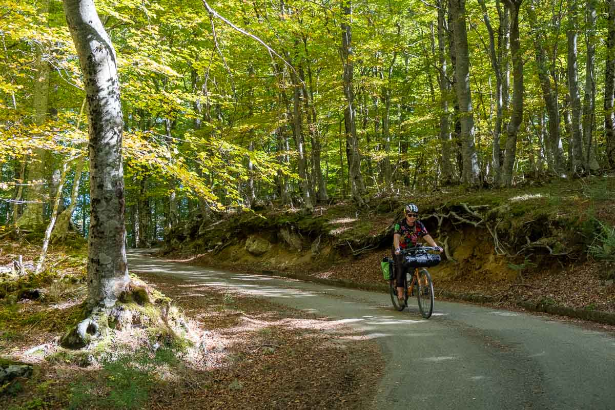 Nel verde della Calabria in bicicletta