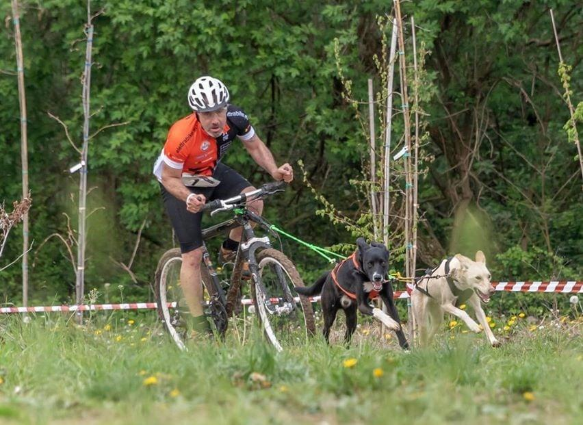 Bikejoring Alessandro Usignolo