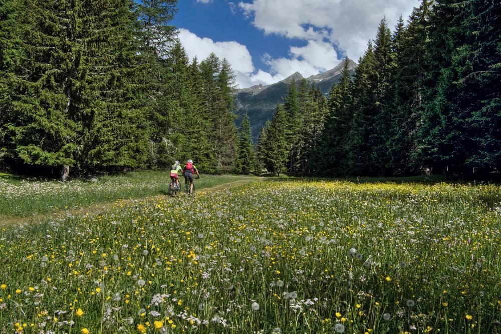 Valle d'Aosta cicloturismo Chamois