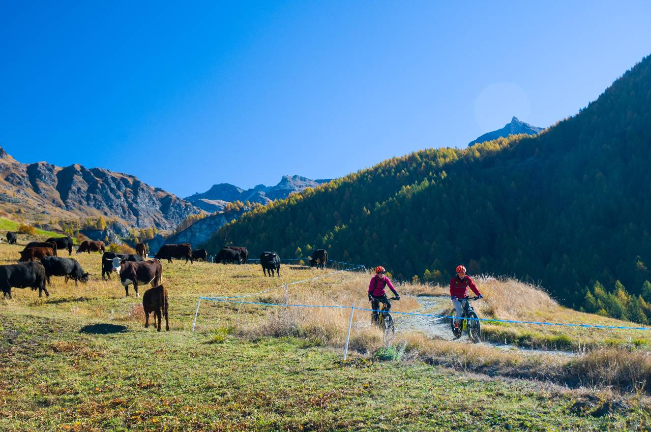 BikeSquare cicloturismo Valle d'Aosta