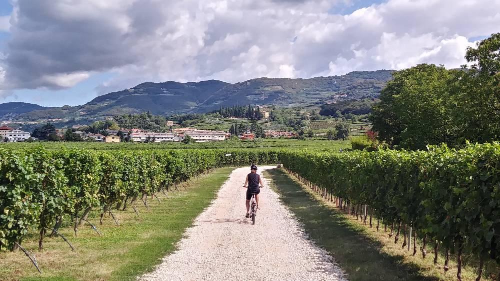 Verona bici Valpolicella cicloturismo