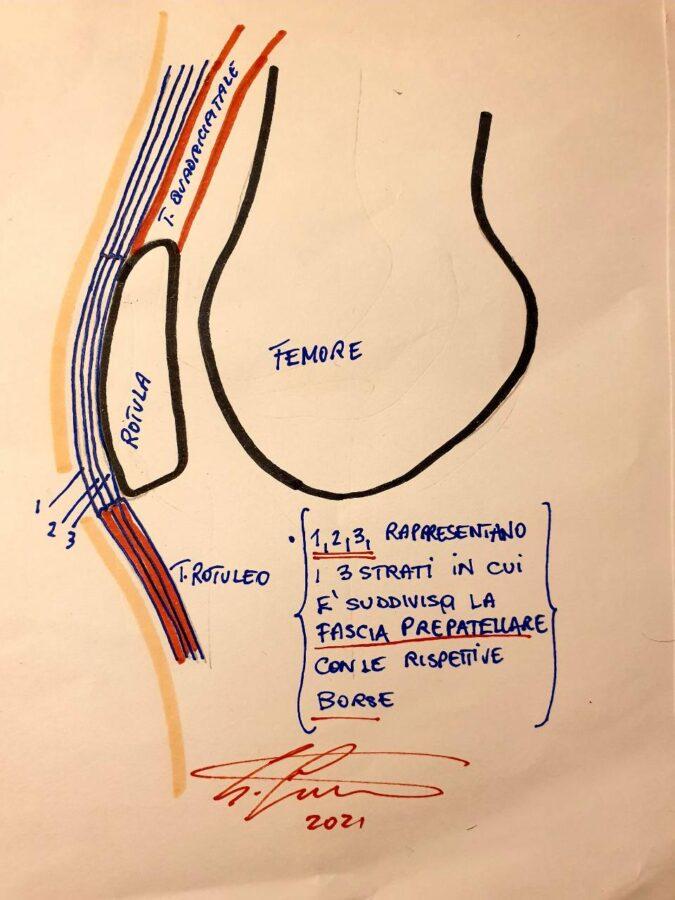 Patellar Friction Syndrome ginocchio Sebastiano Giambartino Bikeitalia