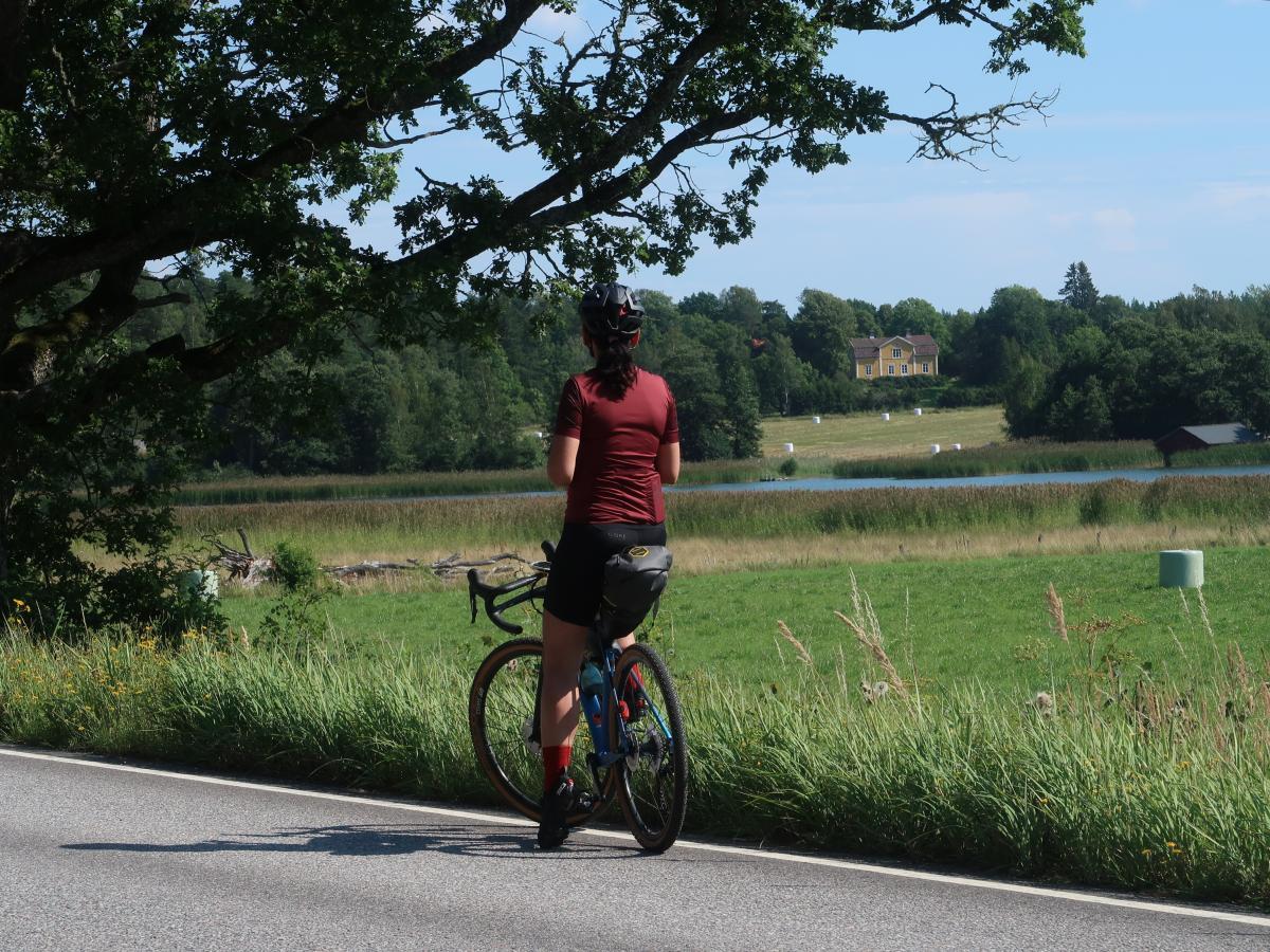 Rinforzare il cuore in bicicletta
