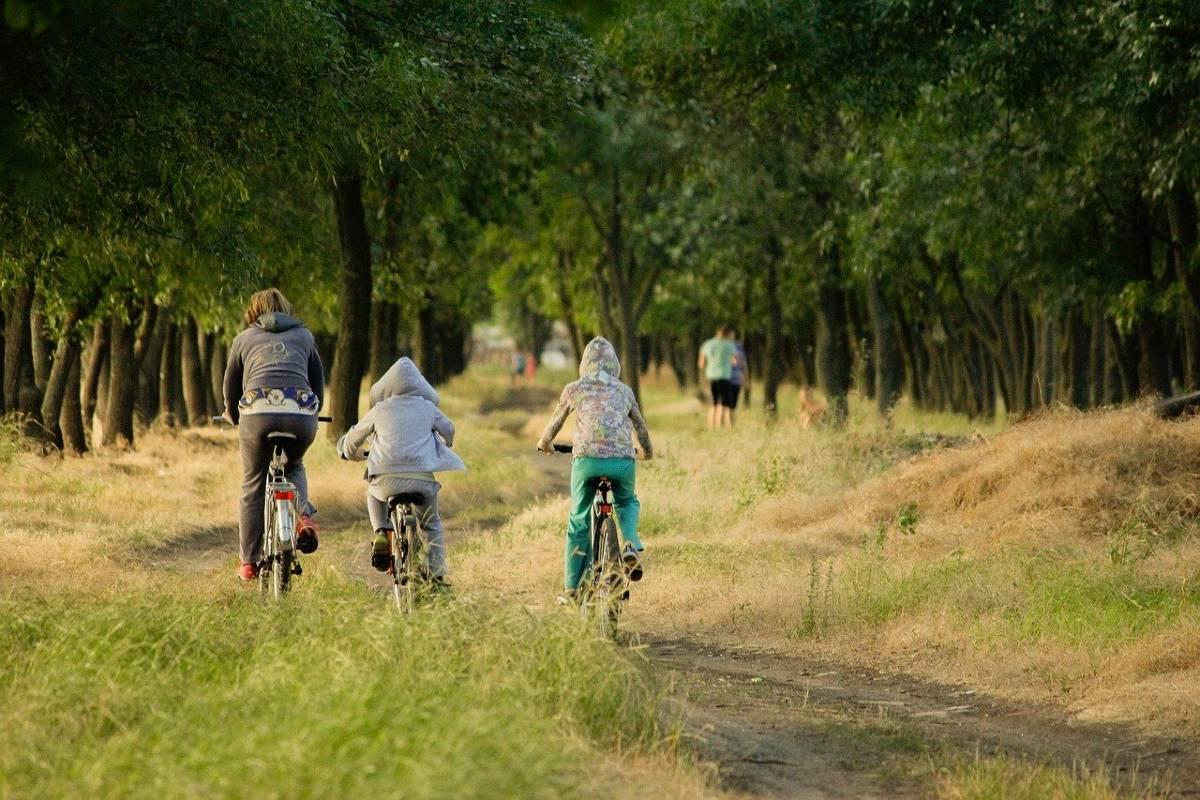 Bici sport famiglia
