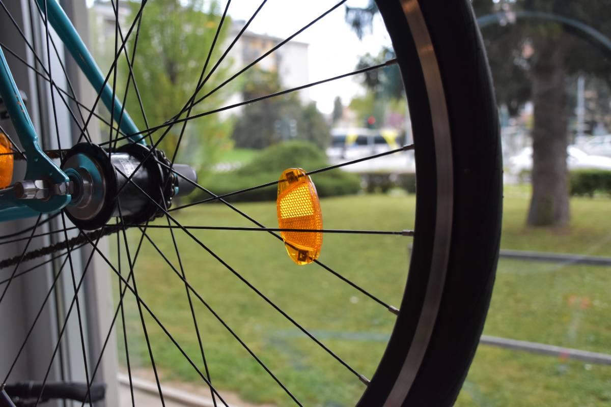 Ruota bici vetrina