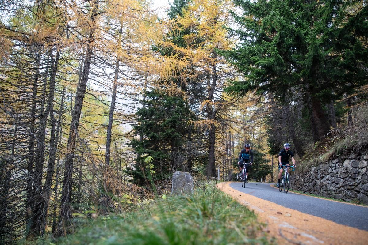 Passo Gavia in Bicicletta