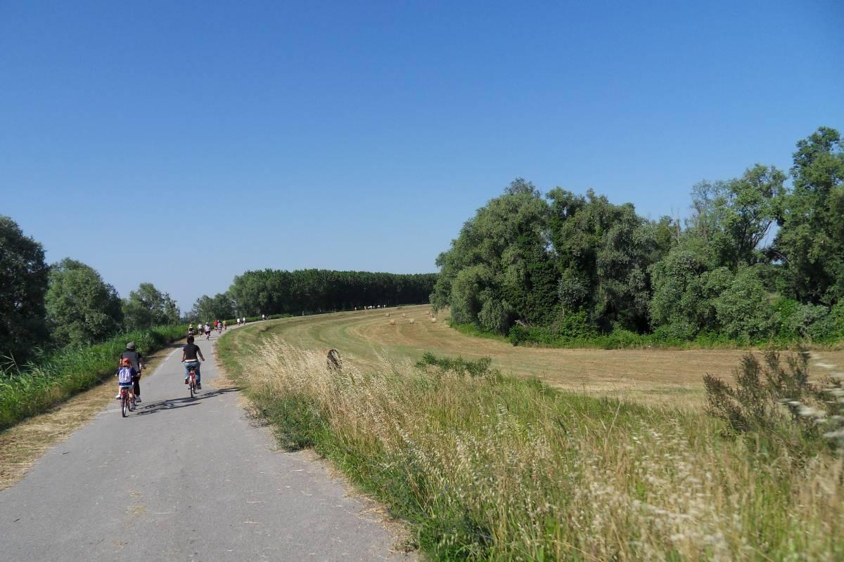 Pedalare a Destra del Po, Ferrara cicloturisimo, Delta del Po