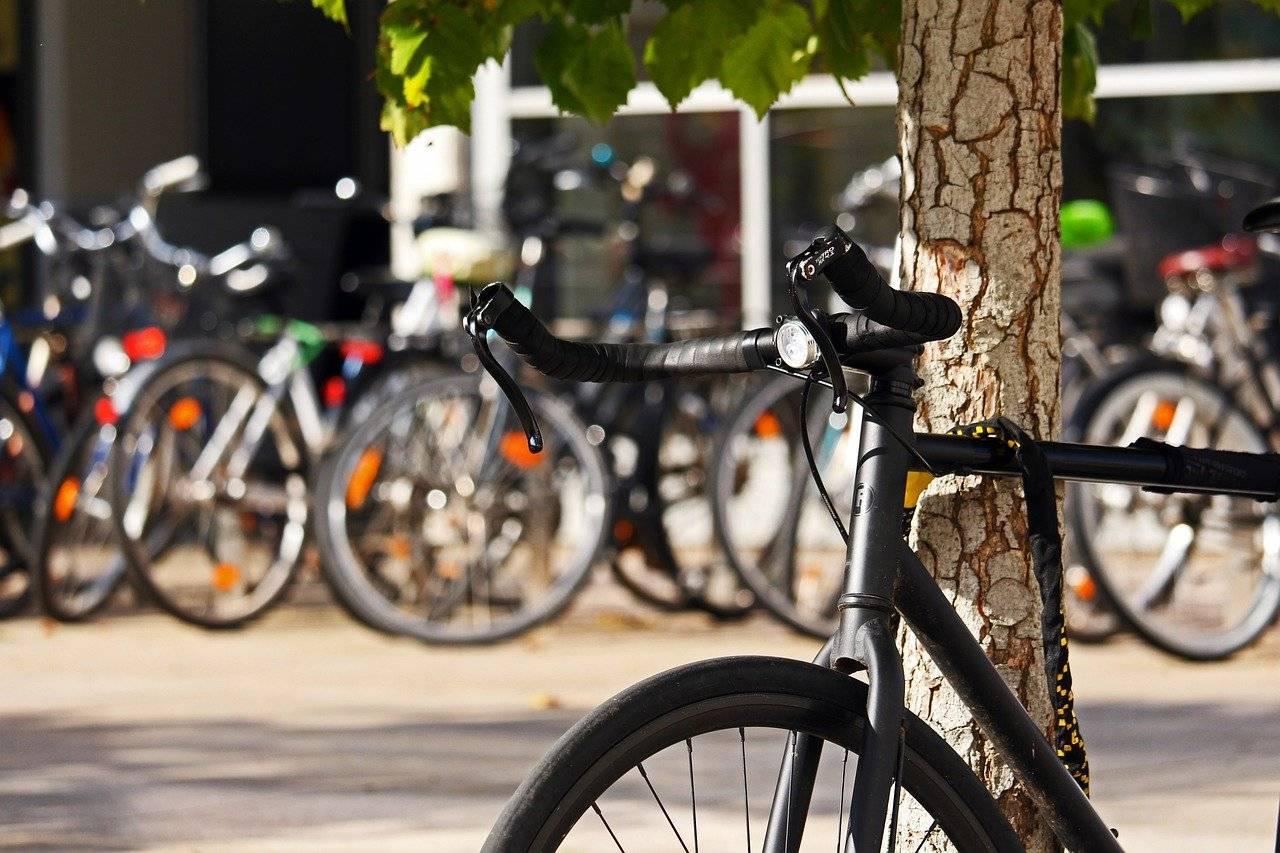 Bici parcheggio università